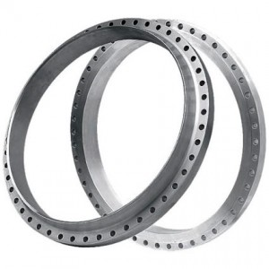 ring-flanges-Manufacturers